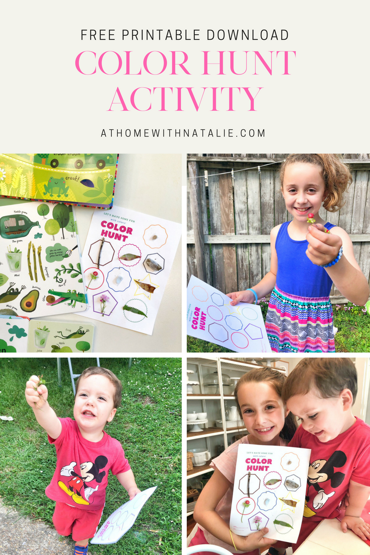 Color Hunt Activities – Free Printables
